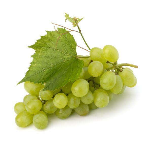 Grape white Liquid | Nikotinfrei - 10ml / 50ml / 100ml