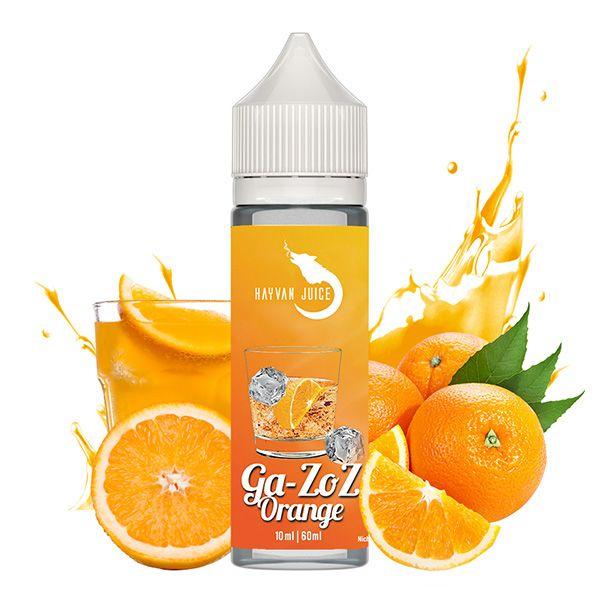 Hayvan Juice Ga-zoz Orange Aroma - 10ml