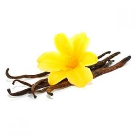 Vanilla classic Aroma by FlavourArt - 10ml
