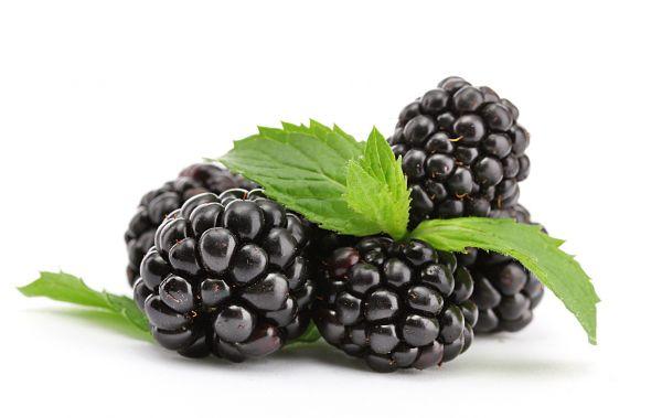 Blackberry Liquid | Nikotinfrei - 10ml / 50ml / 100ml