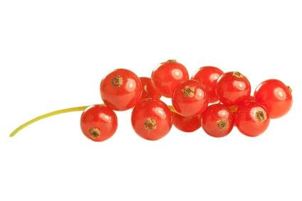 Dampfer-Taxi® Aroma Johannisbeeren Geschmack - 10ml